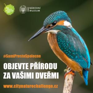 City Nature Challenge 2021 - pozvánka